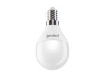 Лампы шар (G45)