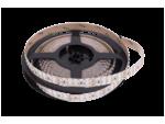 Лента светодиодная стандарт SMD 3528, 240 LED/м, 19,2 Вт/м, 24В, IP20, Цвет: Холодный белый