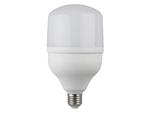 Светодиодная лампа ЭРА LED smd POWER 30W-4000-E27 (20/420)