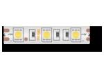 14,4 Вт/м SMD5050  (60 диодов на метр) Закрытая (IP68) Цвет Холодный белый 12В