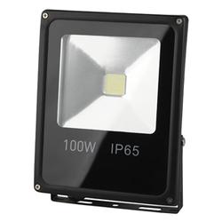 Прожектор светодиодный ЭРА LPR-100-6500K-М
