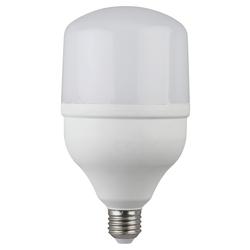 Светодиодная лампа ЭРА LED smd POWER 20W-4000-E27 (40/800)