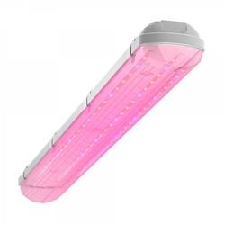 Светодиодный светильник Geniled ЛСП Agro 40Вт Прозрачный